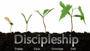 Disciple Seeding
