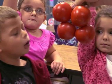 Potato or Tomato – Jamie Oliver's Food Revolution